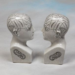 Phrenology Head Bookends Ceramic - Medical Student Ornament Scientific